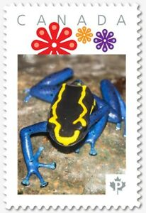 Yellow & Blue DART FROG = Personalized Postage stamp MNH Canada 2018 [p18-07s04]