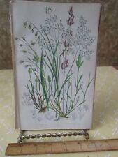 Vintage Print,GREY HAIR SOFT GRASS,Plate256,Flowering Plants,Great Brit,Pratt