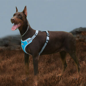 No Pull Dog Harness Chest Strap Adjustable Reflective Waterproof for L/M/S dogs