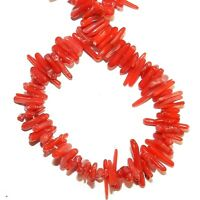 CRL231 Red Bamboo Coral Gemstone Beads Small 5mm - 14mm Fine-Tip Cupolini 15""