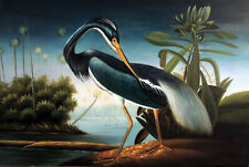 Blue Louisiana Heron Egret Bayou Swamp Bird 24X36 Avian Oil Painting STRETCHED