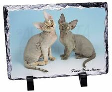 Devon Rex Cats 'Love You Mum' Photo Slate Christmas Gift Ornament, AC-20lymSL