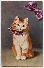 ILLUSTRATEUR SPERLICH. CHAT. CHATS. CAT. CATS. KATZE. KATZEN. RUBAN.