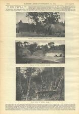 1898 Xingu Indian Tribe Expedition Meyer Villages Scientific American Vintage