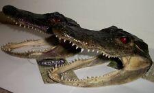 Alligator Head Real American Alligator [2 PACK]