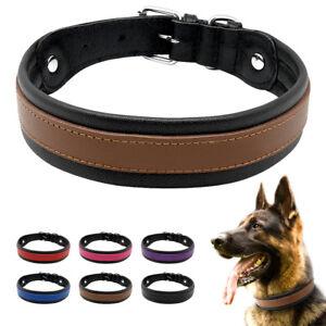 Adjustable Leather Dog Collar Padded Medium Large Dogs Rottweiler Pitbull Boxer
