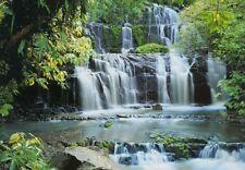 MURALE Parete Foto Carta da parati rientra nella foresta - 3.68 x 2,54 M VERDE scena alberi