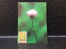619. Portugal Postal Cover Postcard 1983 37.50 Wild Flowers