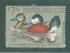 Us Rw 48 1981 duck stamp Ruddy Ducks Mh, damaged gum