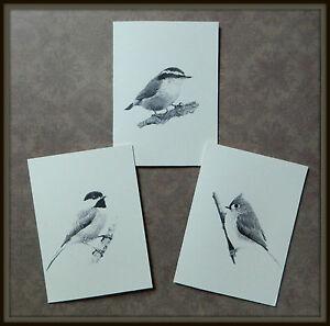 Set of 12 Handmade Blank Bird Print Note Cards Chickadee, Titmouse, Nuthatch