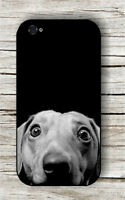 DOG DACHSHUND CURIOUS CASE FOR iPHONE 4 , 5 , 5c , 6 -d5t6