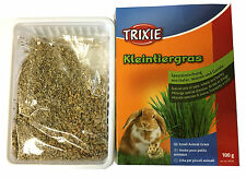 Rabbit Food Grass GROW YOUR OWN GRASS Treat Oats Wheat & Barley Hamster etc 100g