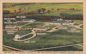 Clarkson Kentucky KY Walter T. Kelley Bee Hive Factory Postcard B14