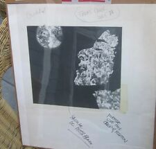 RARE Original CASHBOX Cover and Artwork for the CAROLE KING issue JERRY GARCIA