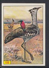 Panini Birds 1978 Sticker - No 122 (S534)