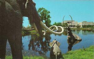 DINOSAUR, Woolly Mammoth, La Brea Tar Pits, Los Angeles CA, 1960's, Prehistoric