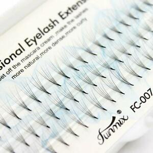 New 0,07C Individual Mink Premade Volume Fans W Lashes 5D Eyelash Extension UK