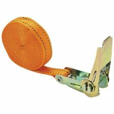 Cartrend 70143 - Cinghia di fissaggio con cricchetto 5 M x 25 mm