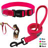 Reflective Nylon Dog Collar Leash Set Small Medium Large Dogs Training Lead Rope