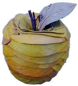 Leaf Twig Apple Natural Green Rustic Country Fruit Craft Decor Filler 630f