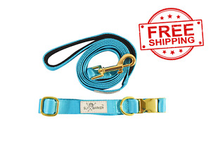 Solid Blue Dog Walking Collar and Leash Set Gold Hardware Small Medium Large
