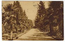 Park in Sinon, Sotchi Area, Caucasus, Russia, 1927 to Leningrad
