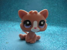 ORIGINAL Littlest Pet Shop   little Cat 2191 Shipping with Polish