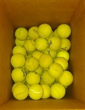 24 USED TENNIS BALLS - LOW GRADING - DEAD - DOG TOYS - OTHER USES
