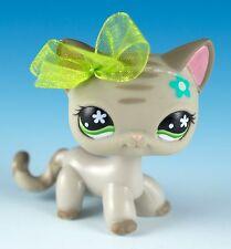 Littlest Pet Shop Shorthair Cat #483 Gray with Green Eyes Blue Flower On Head