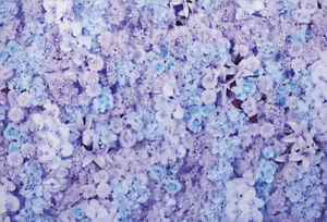 Photography Background Props Vinyl Photo Backdrop Purple Flower Party Birthday