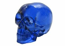 Colorful Blue Clear Cast Resin Human Skull DIY Shift Knob Zombie Rat Rod Lever