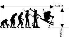 Snow Skier Evolution Skier Winter Sports sticker decal Free Us Ship