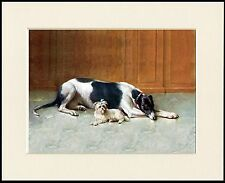 GREYHOUND AND MALTESE DOGS LOVELY DOG PRINT MOUNTED READY TO FRAME