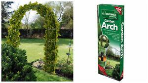 Garden arch trellis feature Garden climbing plant roses either