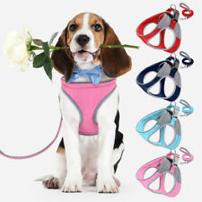 Step In Small Dog Harness With Leash Reflective Soft Padded Adjustable Blue Pink