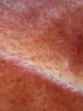 ♥♥♥ Mohair von Schulte  43 x 31 cm      orange mit roten Spitzen♥♥♥