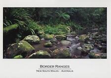 BORDER RANGES NSW POSTCARD - BRINDLE CREEK in WORLD HERITAGE RAINFOREST NSW PC
