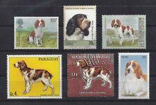 Dog Art Head Body Portrait Postage Stamp Welsh Springer Spaniel Collection 6xMnh