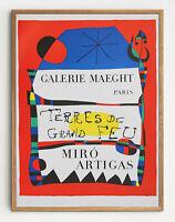 "Beautiful Joan Miro ""Terres de Grand Feu"" Lithograph Print (unframed)"