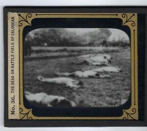 Dead on the Battlefield of Caloocan glass lantern slide Spanish American War