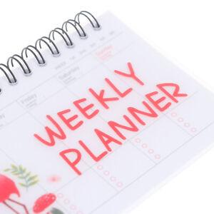 Weekly Planner Notebook Journal Agenda 2021 2022 Cure Diary Organizer  Schedule