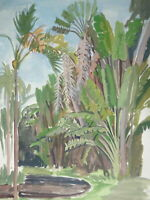 GRAND DESSIN ORIGINAL GOUACHE VUE PAYSAGE RIO DE JANEIRO BRÉSIL JUNGLE 1950 b