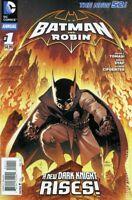 Batman and Robin Annual #1 (2013) DC Comics