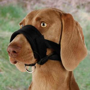 Muzzle Loop Durable | Dog Training Handling | Adjustable Safe Control Secured