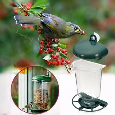 Bird Feeder Window Glass Perspex Suction Cup Hanging Clear Viewing Watch Seeds