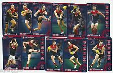 2013 Teamcoach MELBOURNE Team Set