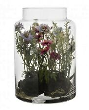 Sia dried artificial flowers ebay sia trs beau terrarium fleurs sauvages birthday neuf hauteur mightylinksfo Image collections