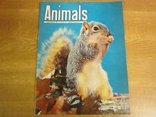 September 3rd 1963, ANIMALS, Eastern Fox Squirrel, Saddle-Billed Stork, Giraffe.
