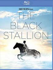 THE BLACK STALLION (NEW BLU-RAY)