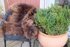 PEAU DE MOUTON / D'agneau Grizzly marron 90-100 cm tapis d'entrée déco ! TOP
